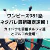 ワンピース981話ネタバレ最新確定速報!カイドウを目指すルフィ達とマルコの登場!
